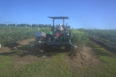 Orchard Fertilizer Applicator